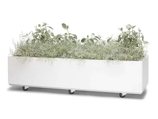 Hvit blomsterkasse med hjul med diverse grønne planter