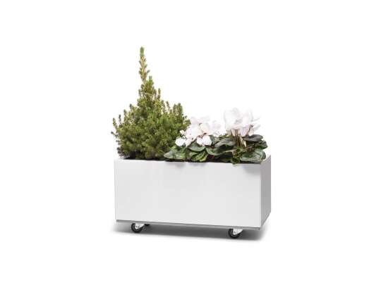 Hvit blomsterkasse med hjul med grønne planter og blomster