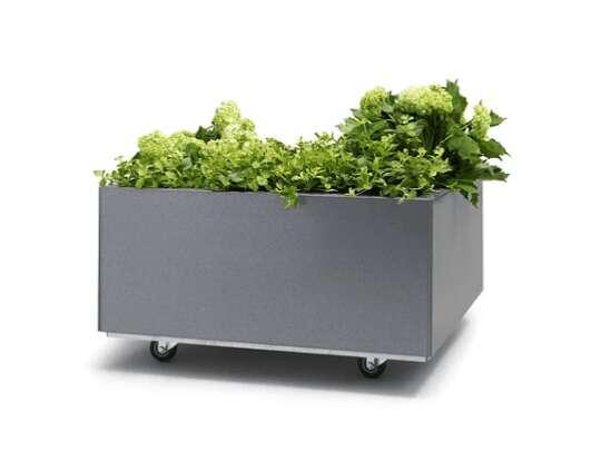 Bedd plantekasse i galfan med bunn og hjul