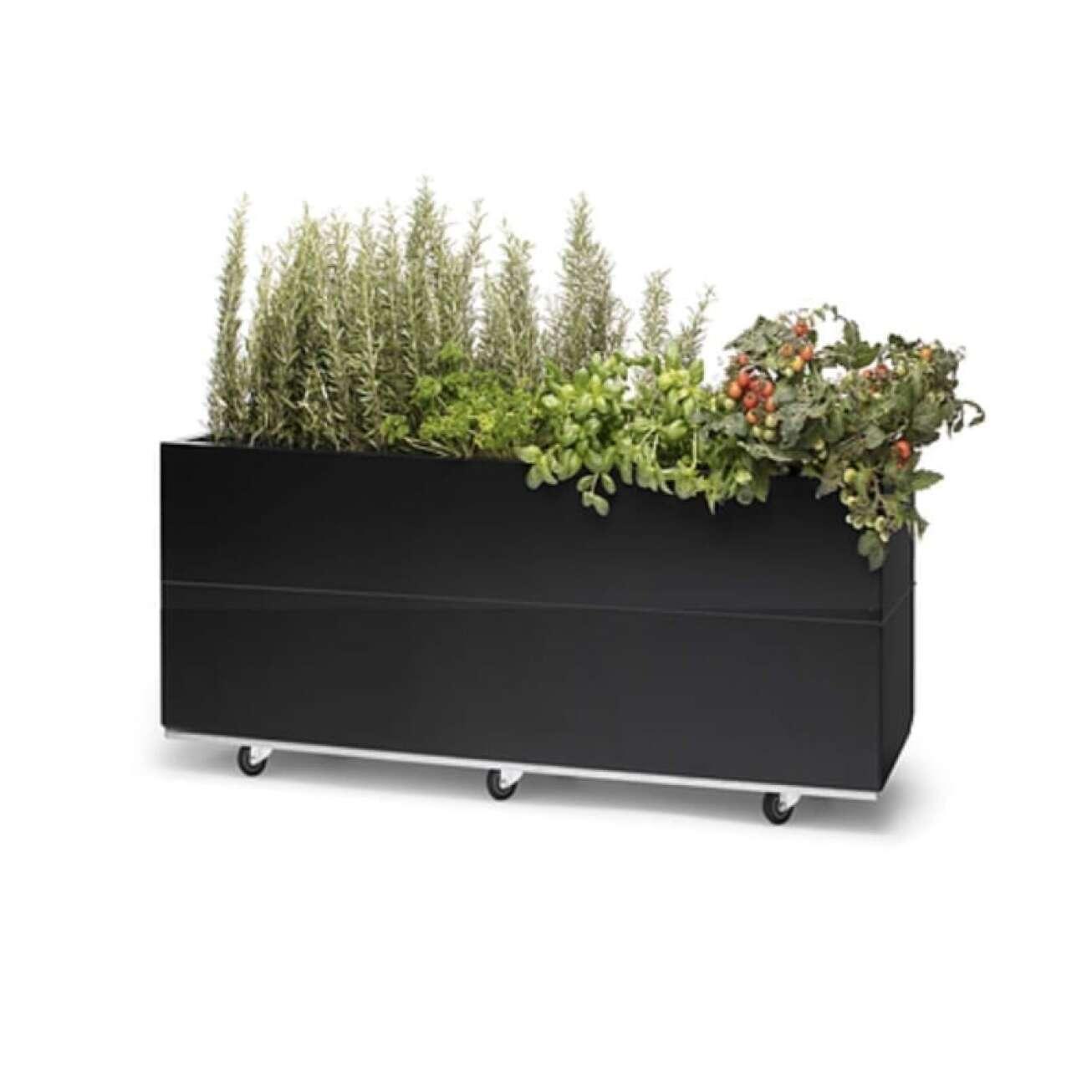 Plantekasse I Sort/galfan H50 Med Bunn Og Hjul/ben Hagemøbler og utemøbler - Fine design