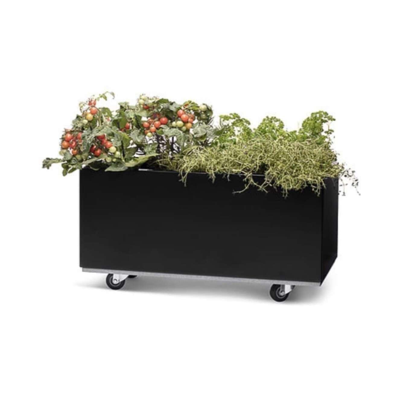 Plantekasse I Sort 60x60x25 Cm Med Bunn Og Hjul. Bedd (40-008s) Hagemøbler og utemøbler - Fine design