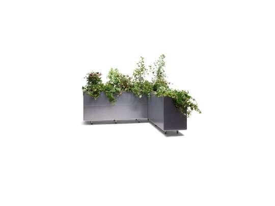 Sort plantekasse med grønne planter