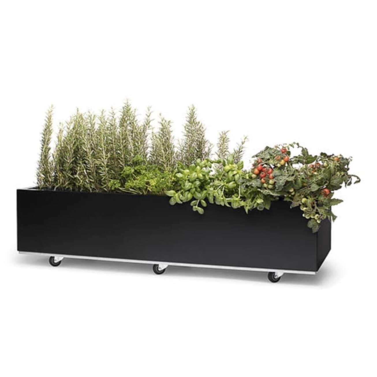 Plantekasse I Sort 120x60x25 Cm Med Bunn Og Hjul (40-012s) Hagemøbler og utemøbler - Fine design