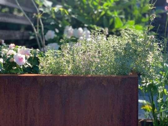 Plantekasse I Rust 80x40x25 Cm Med Bunn Og Hjul. Bedd Hagemøbler og utemøbler - Fine design