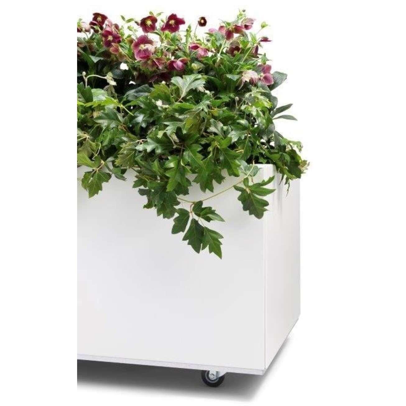 Plantekasse I Hvit 60x60x25 Cm Med Bunn Og Hjul. Bedd (40-008h) Hagemøbler og utemøbler - Fine design
