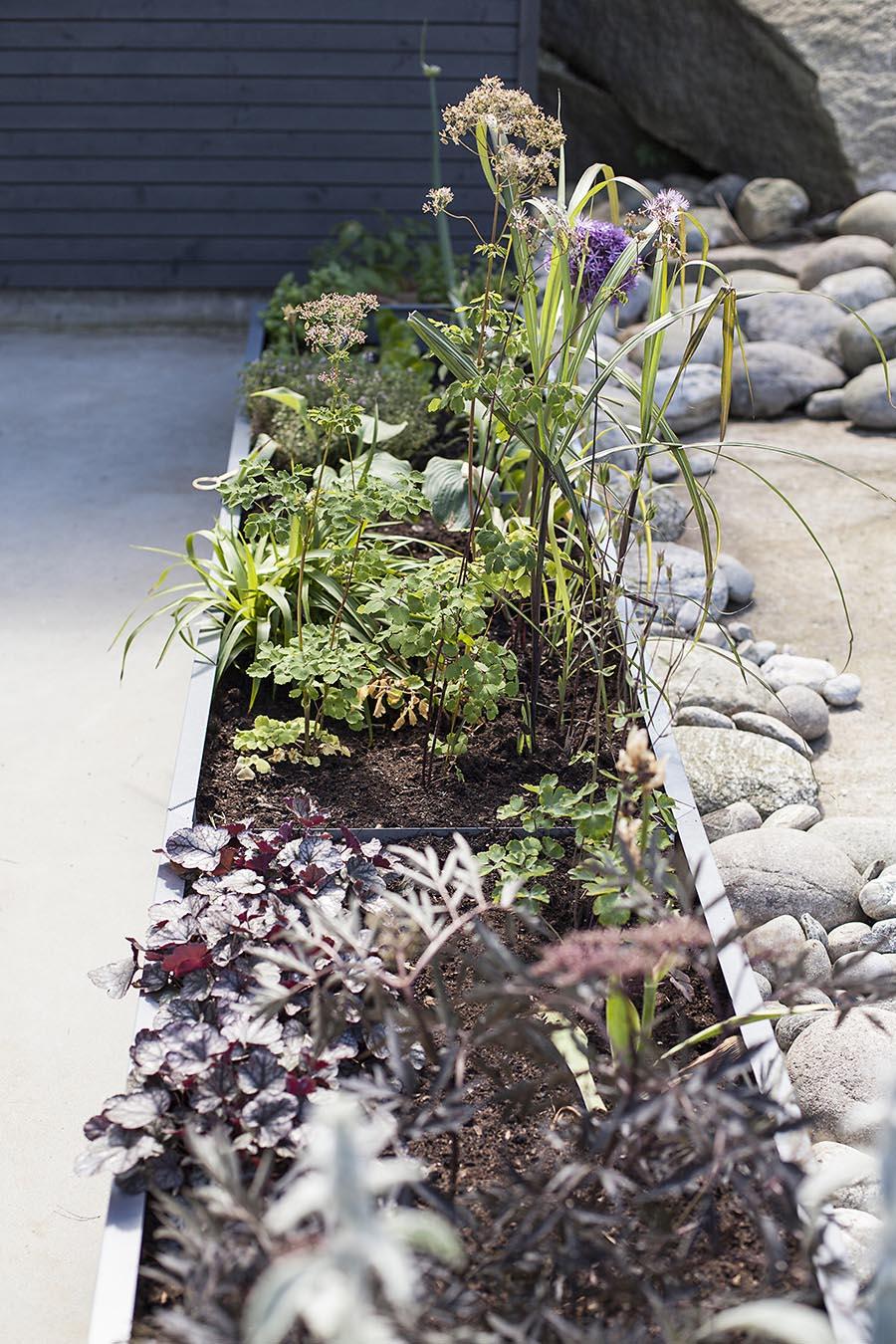 Bedd-plantekasser-med-ulike-stauder-og-med-rullestener-langs Hagemøbler og utemøbler - Fine design