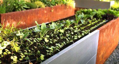 Bedd Plantekasser – Hva Med En Kjøkkenhage På Hjul? Hagemøbler og utemøbler - Fine design