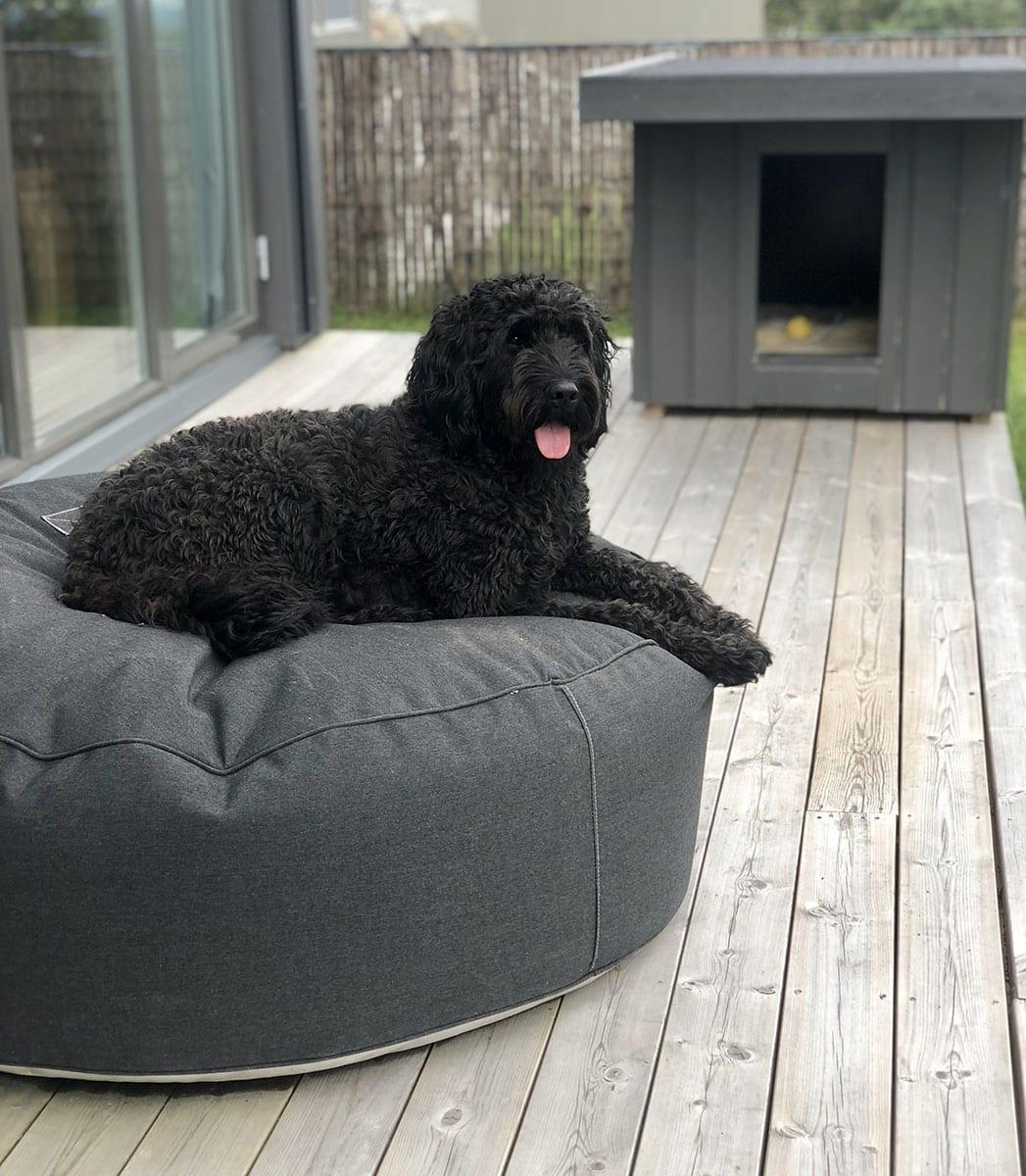 Hund-på-trimm-puff Hagemøbler og utemøbler - Fine design